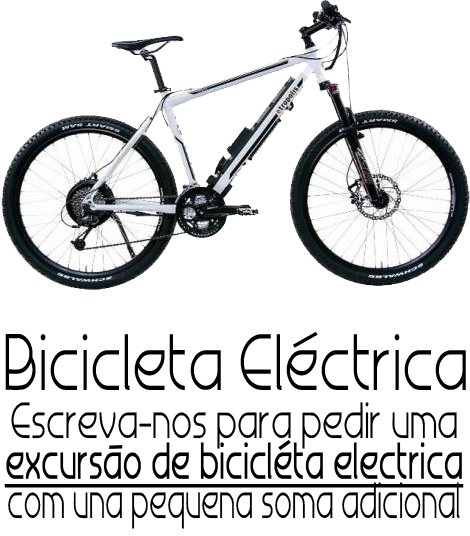 biciElettricaPT.png